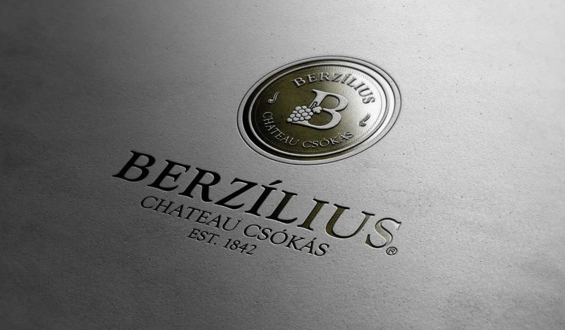 Berzilius logo presentation